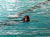 Schwimmkurs ab 5 Jahre